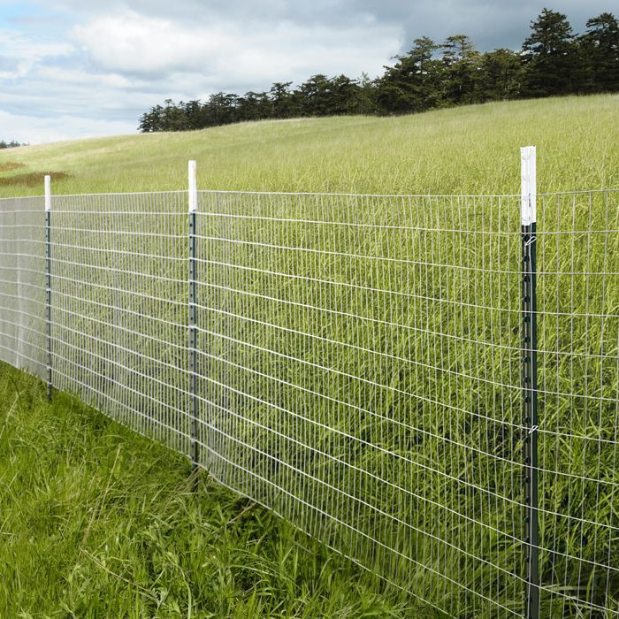 Chicken Wire Fence A fence can provide