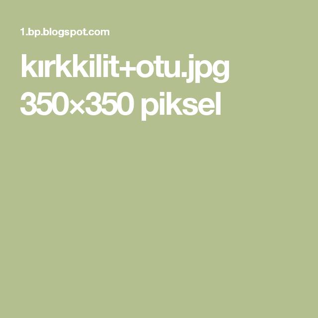 kırkkilit+otu.jpg 350×350 piksel