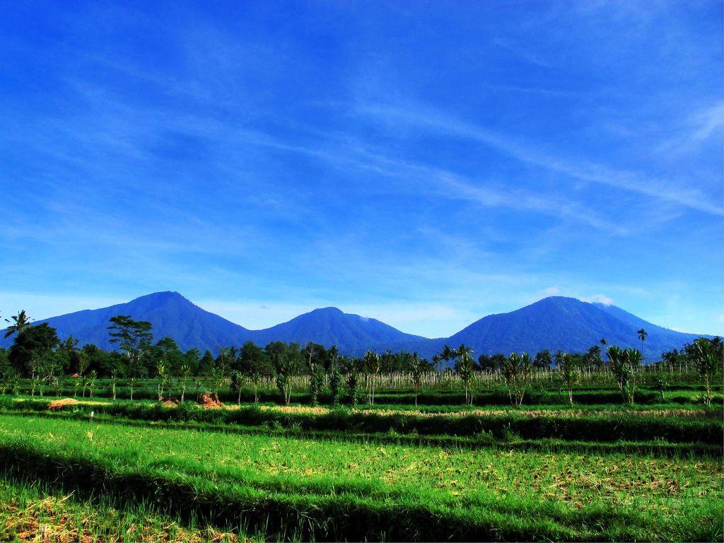Indahnya Pemandangan Gunung Batukaru Bali Pemandangan Bali Indonesia