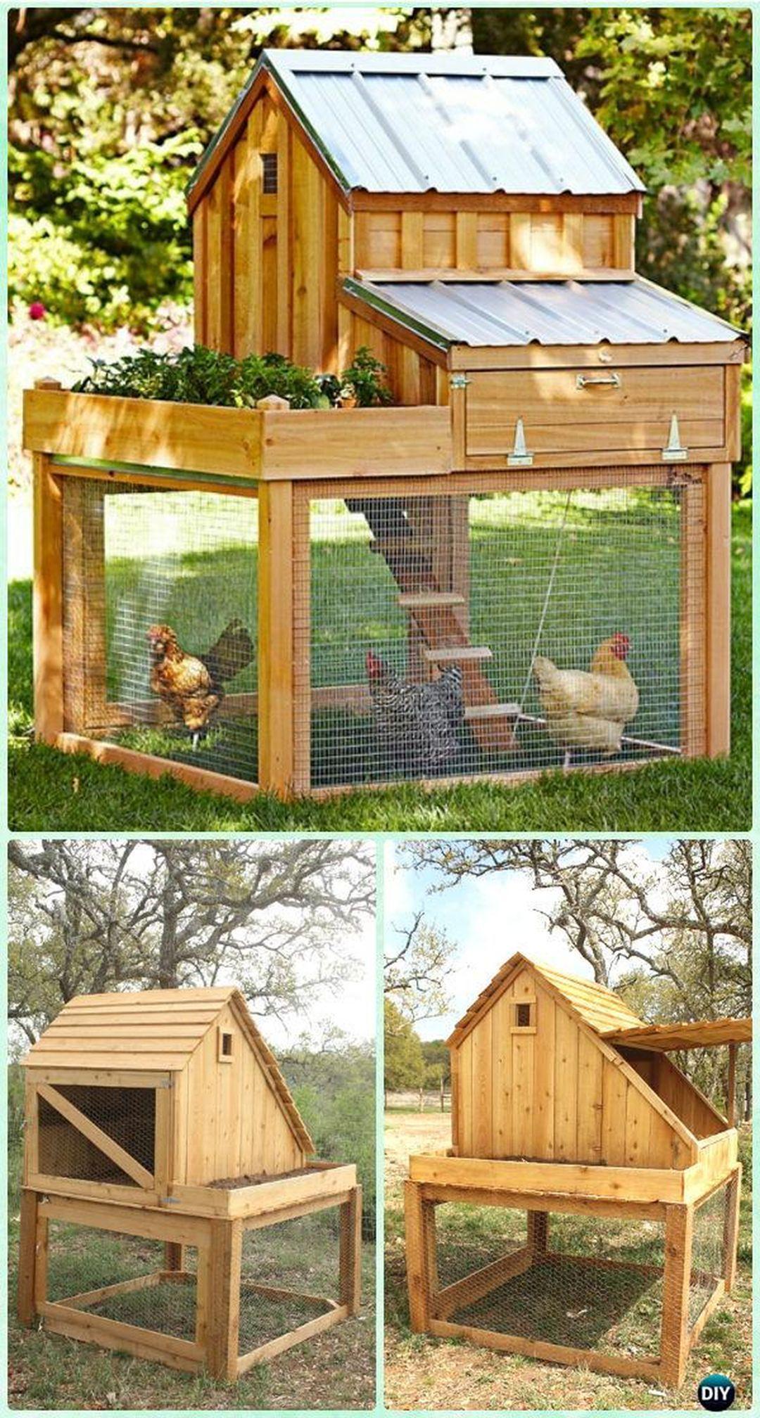 25 Attractive Low Budget Diy Chicken Coop Design Ideas Decor It S Diy Chicken Coop Plans Diy Chicken Coop Small Chicken Coops Small backyard chicken coop designs