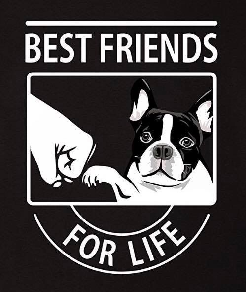 Best Friends For Life You And Your French Bulldog