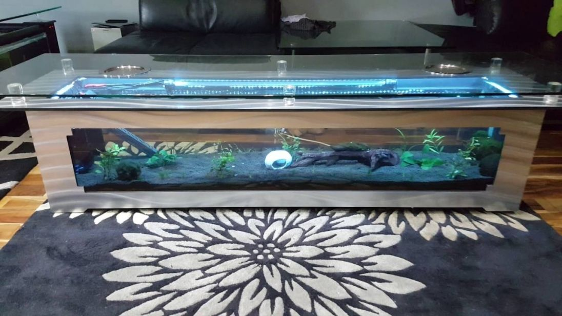 Square Coffee Table Fish Tank Best Interior Wall Paint Check More - Fish tank pool table