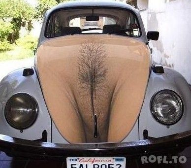 vagina picture on vw hood