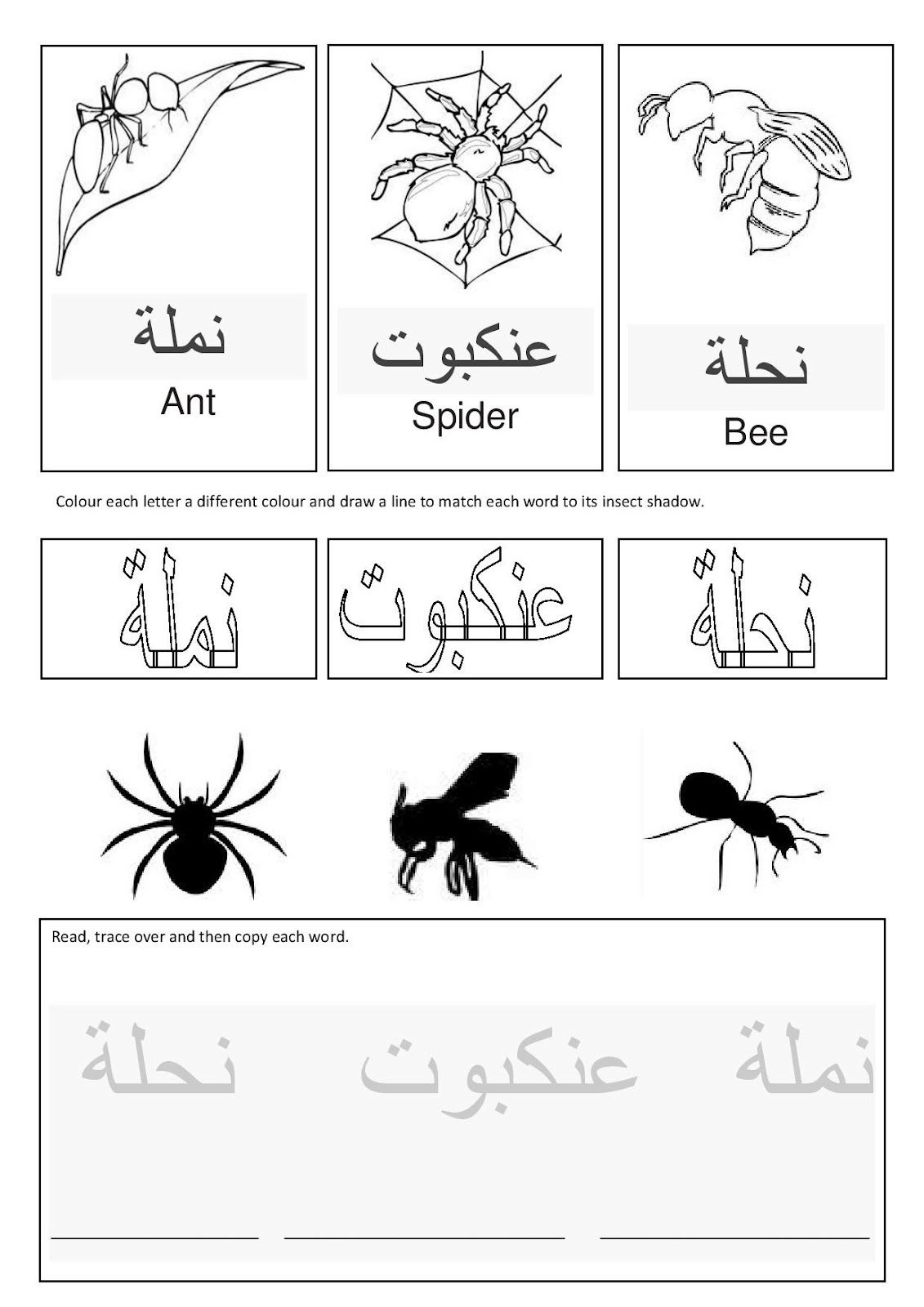 arabic insects free templates links and more islam for children learn arabic alphabet. Black Bedroom Furniture Sets. Home Design Ideas