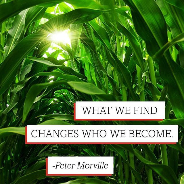 """What we find changes who we become."" - Peter Morville #quote"