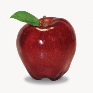 How to Really Dress an Apple Shape Body
