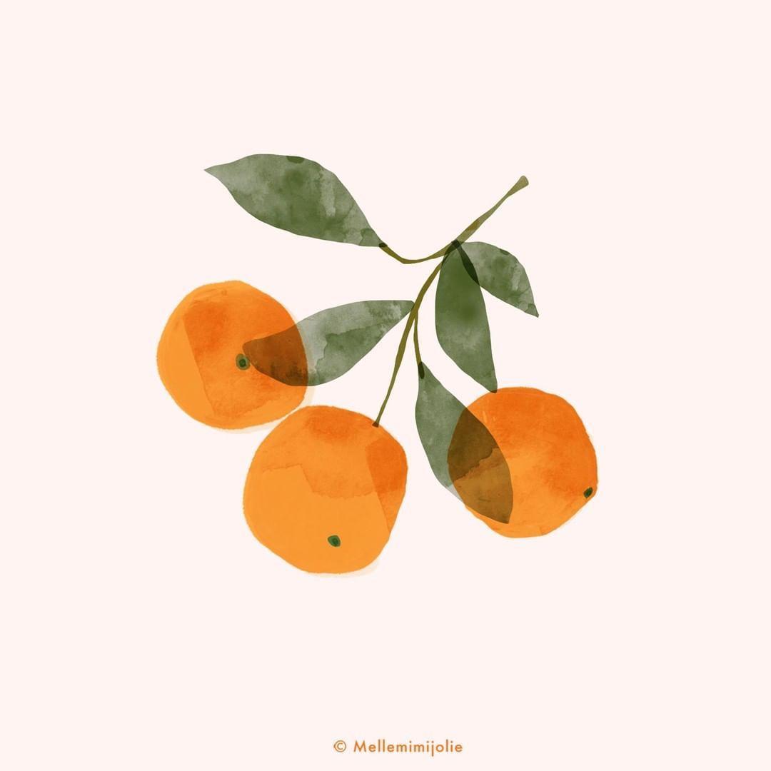 Sandrine Djellil On Instagram Today A Clementine Sketch