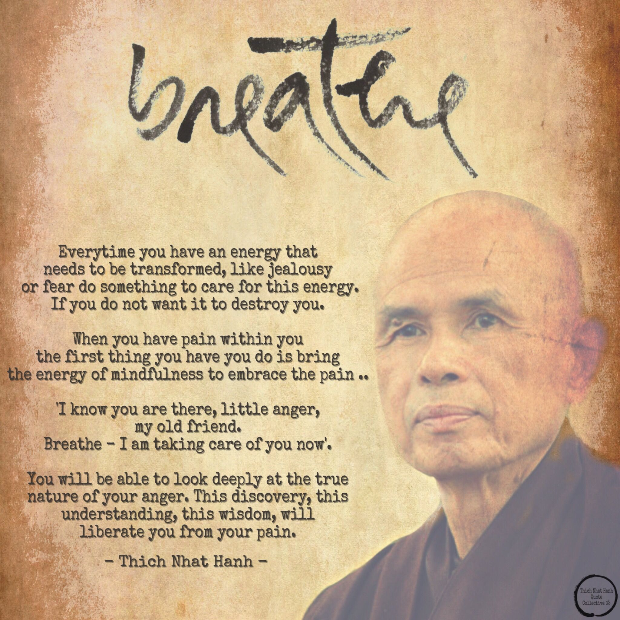 Everytime You Have An Energy That Needs To Be Transformed Like Jealousy Or Fear Do Something To Care For Thi Thich Nhat Hanh Quotes Old Quotes Buddhist Quotes