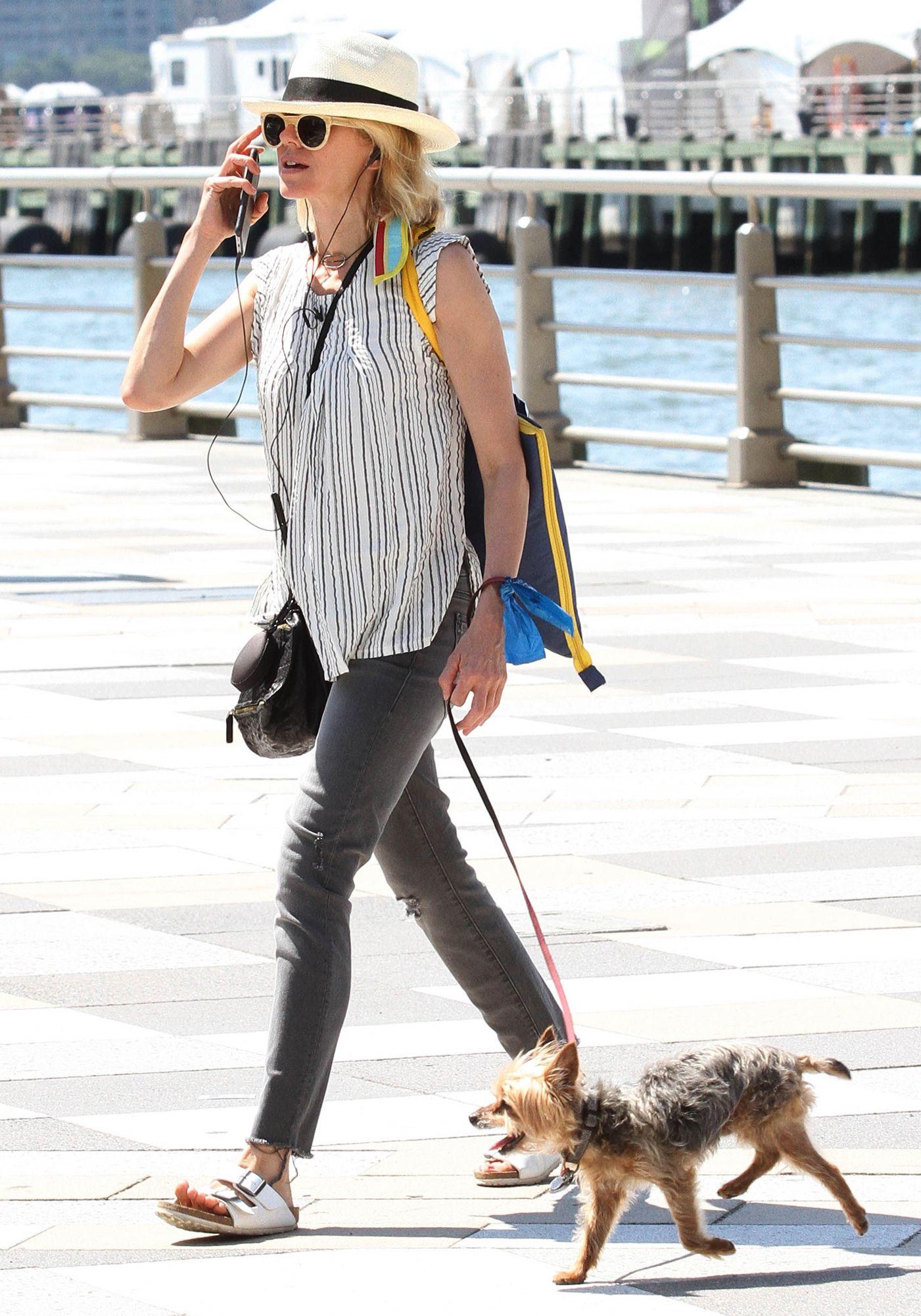 Naomi Watts Walks Her Dog in