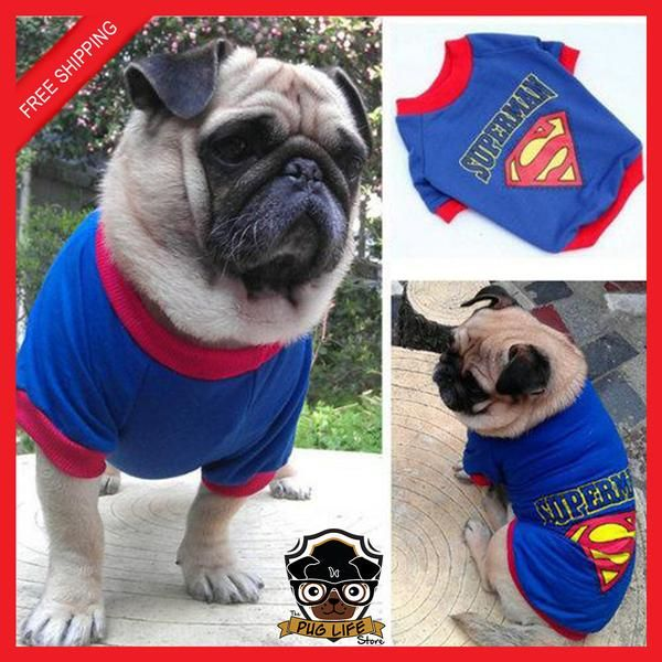 Superman Pug Tee Pug Fashion Pinterest Pet Costumes
