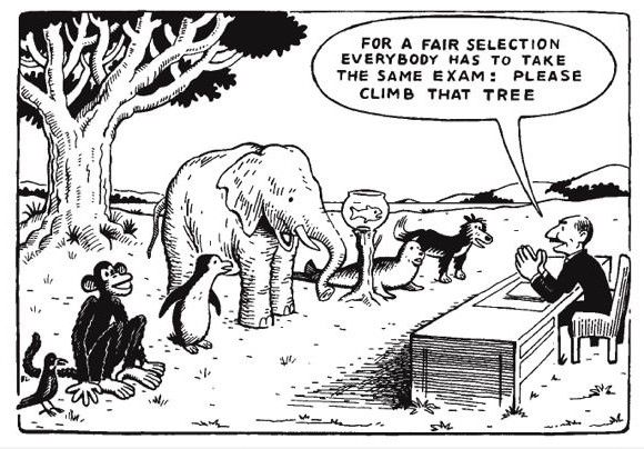 How I Sometimes Feel In School Funny Pictures Albert Einstein