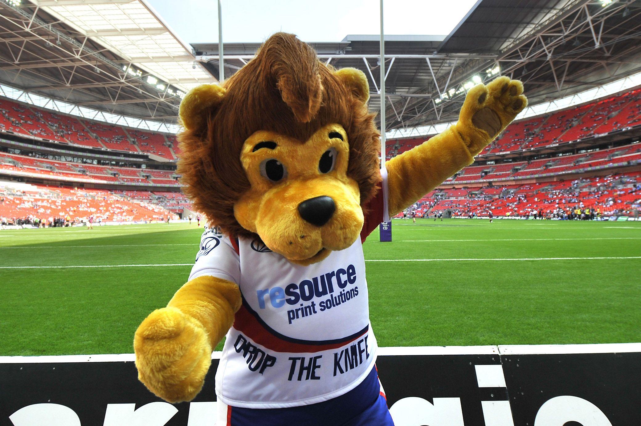 Alfie lion mascot costume mascot character costumes