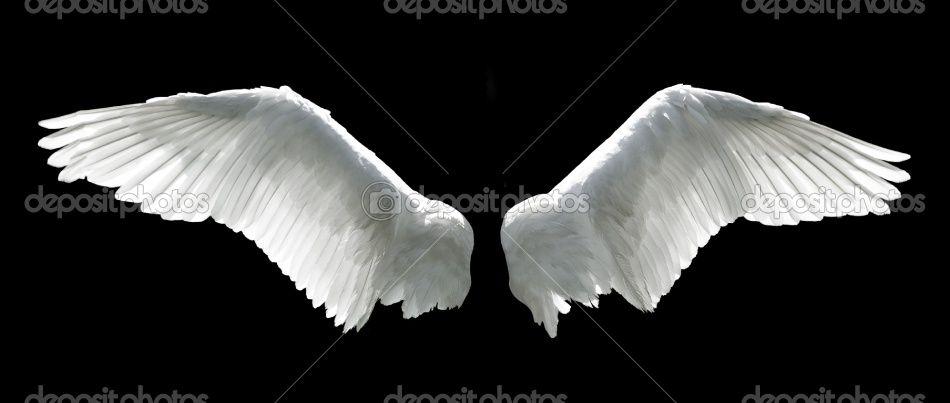 Victorias Secret Angel Wings Wallpaper White Angel Wings Back...