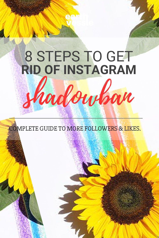 1bc19117f644ba61d0e49e22f9173a6e - How To Get Rid Of Fake Likes On Instagram