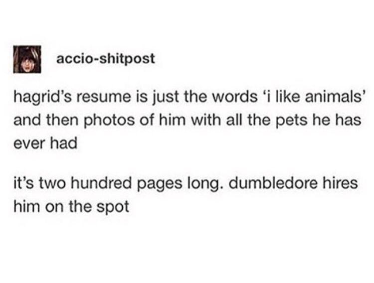 haGriD Potterhead Pinterest Harry potter, Hogwarts and Fandoms
