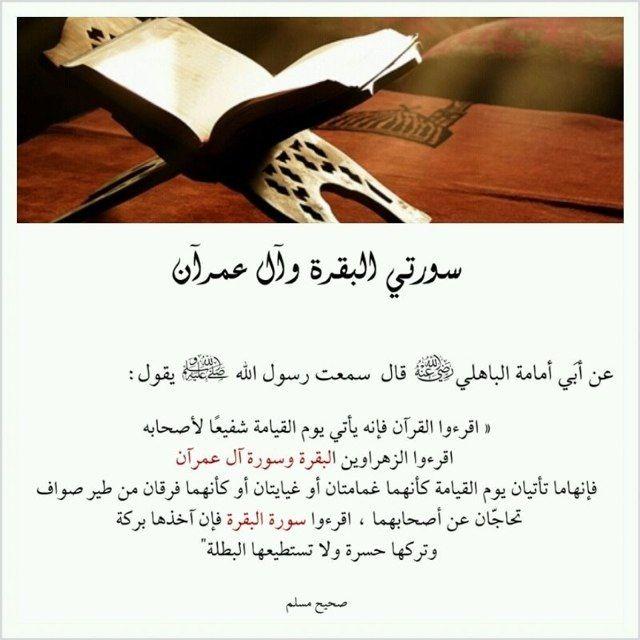 فضل سورتي البقرة وآل عمران Quran