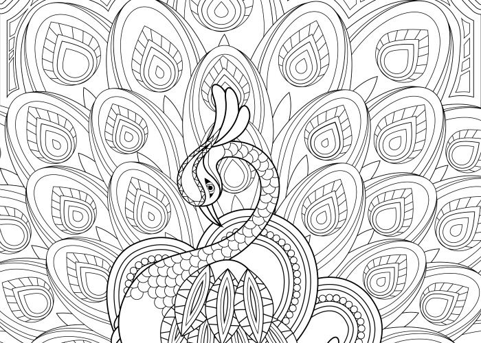 11 Free Printable Adult Coloring Pages Peacock Coloring Pages