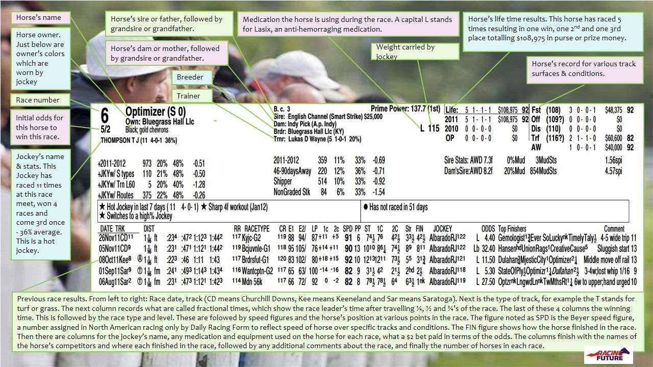 How to read a horse racing program.