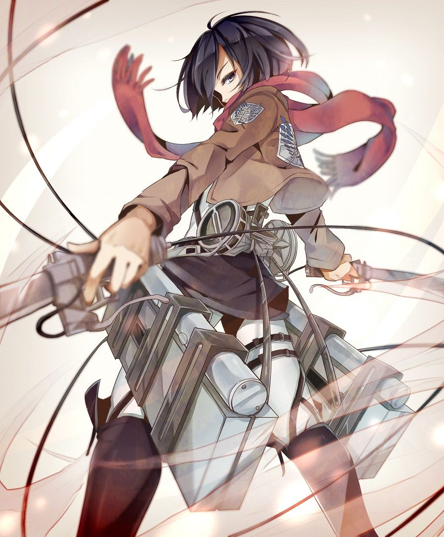 Shingeki no kyojin mikasa ackerman attack on titan anime