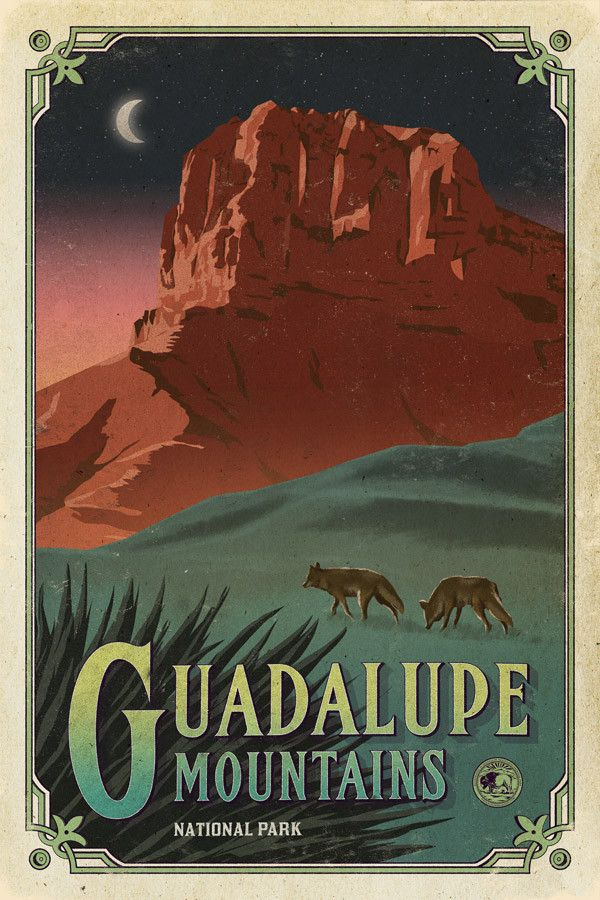 Guadalupe Mountains National Park Poster National Park Posters Guadalupe Mountains National Park Vintage Travel Posters