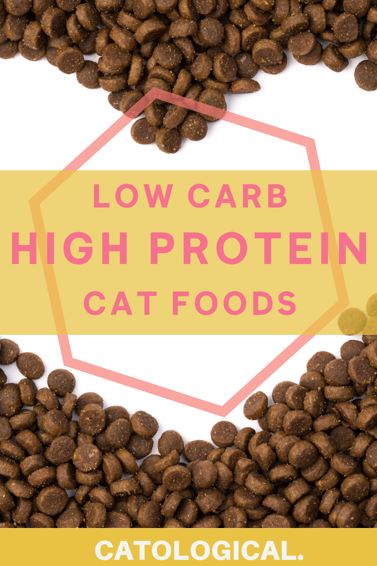 high protein low carb cat diet