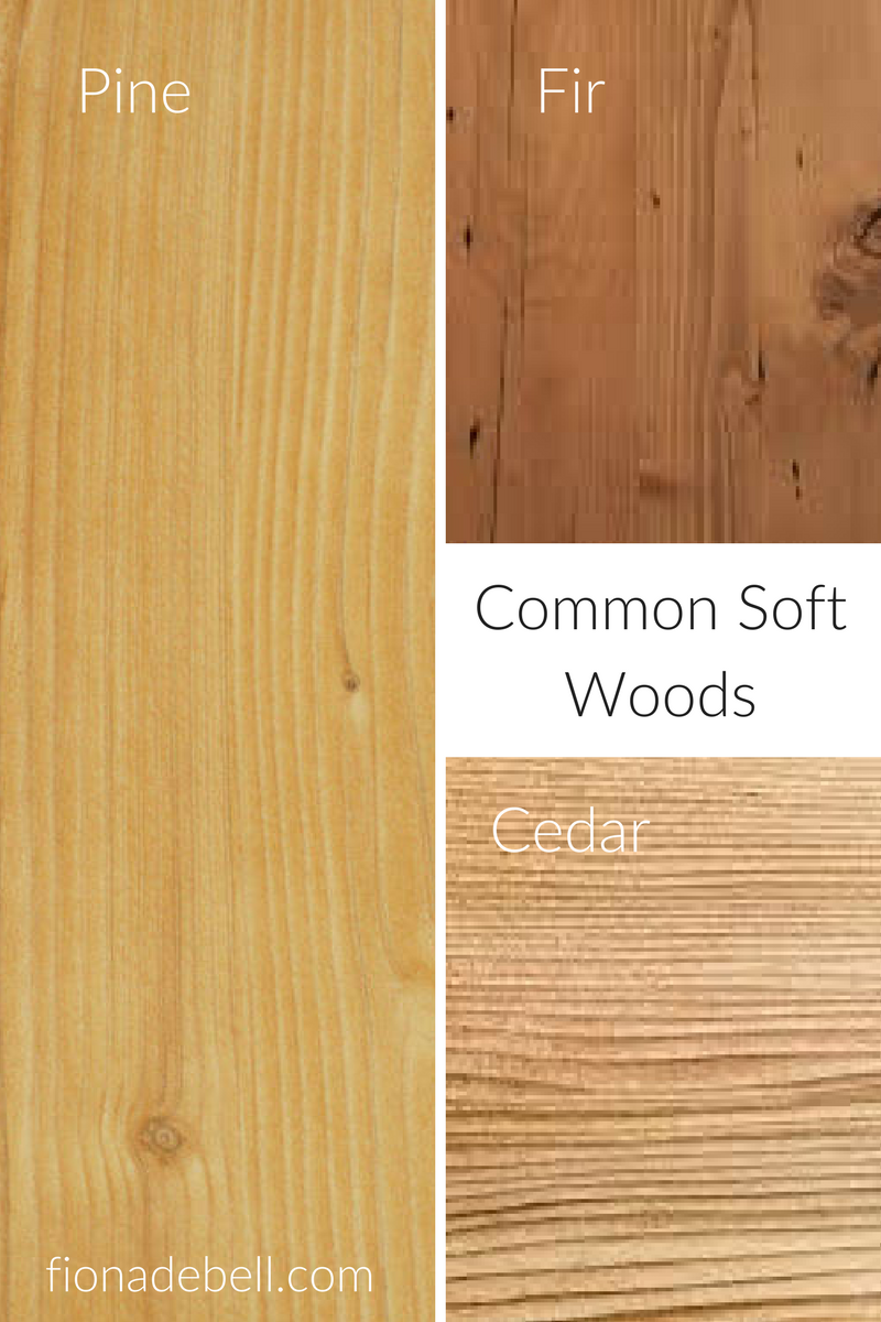 Common Softwood Varieties Types Of Wood Wood Different Types Of Wood