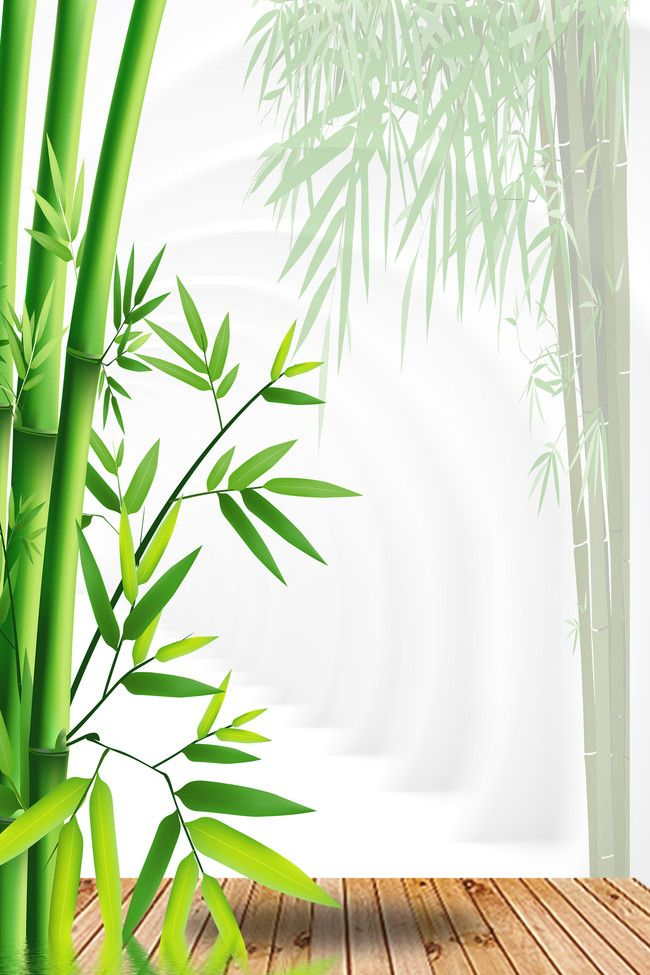 Green Bamboo Poster Background
