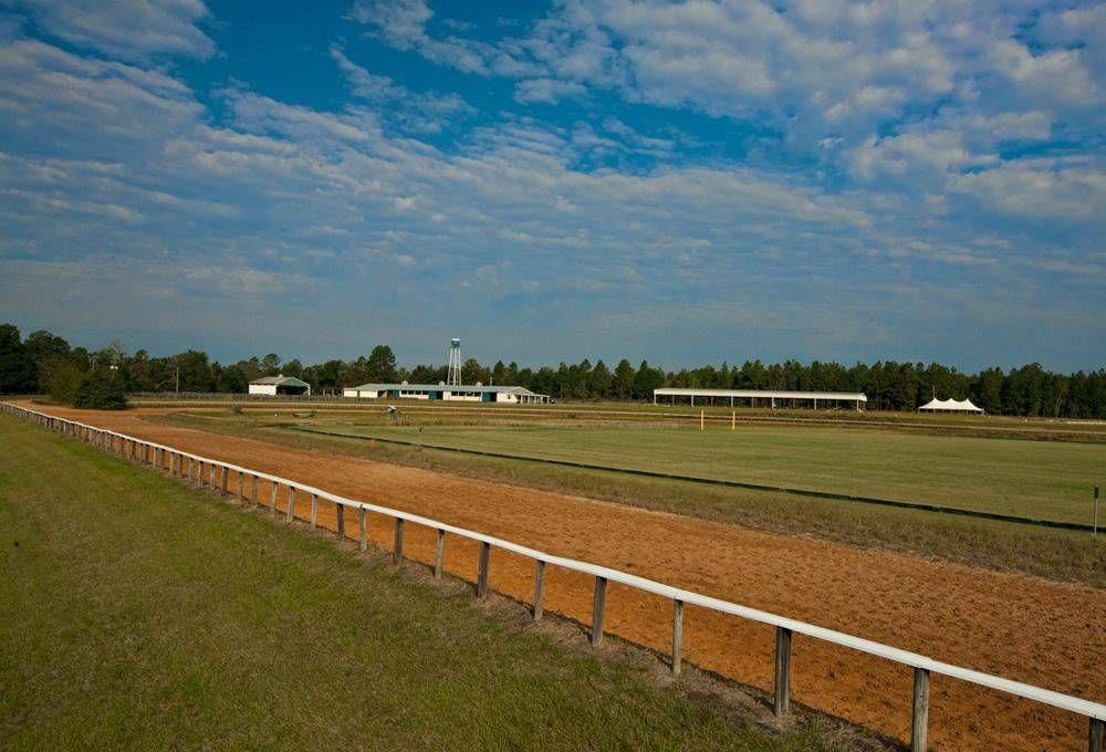 Equestrian Estate For Sale in Aiken County, South Carolina