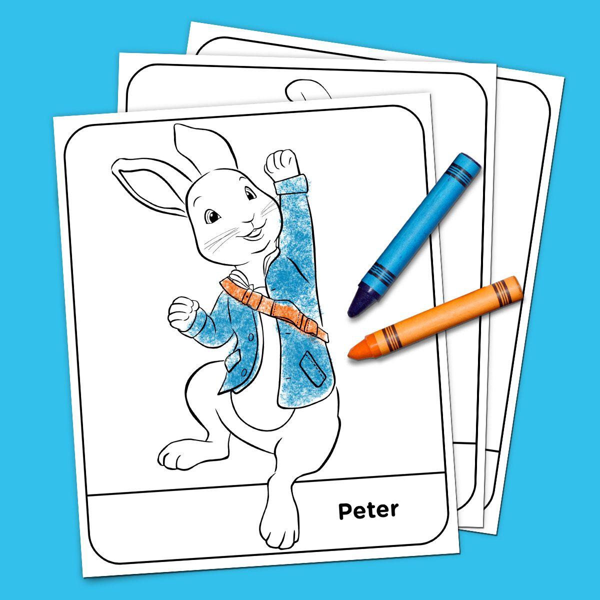 Peter Rabbit Coloring Pack Peter Rabbit Birthday Peter Rabbit Gifts Peter Rabbit