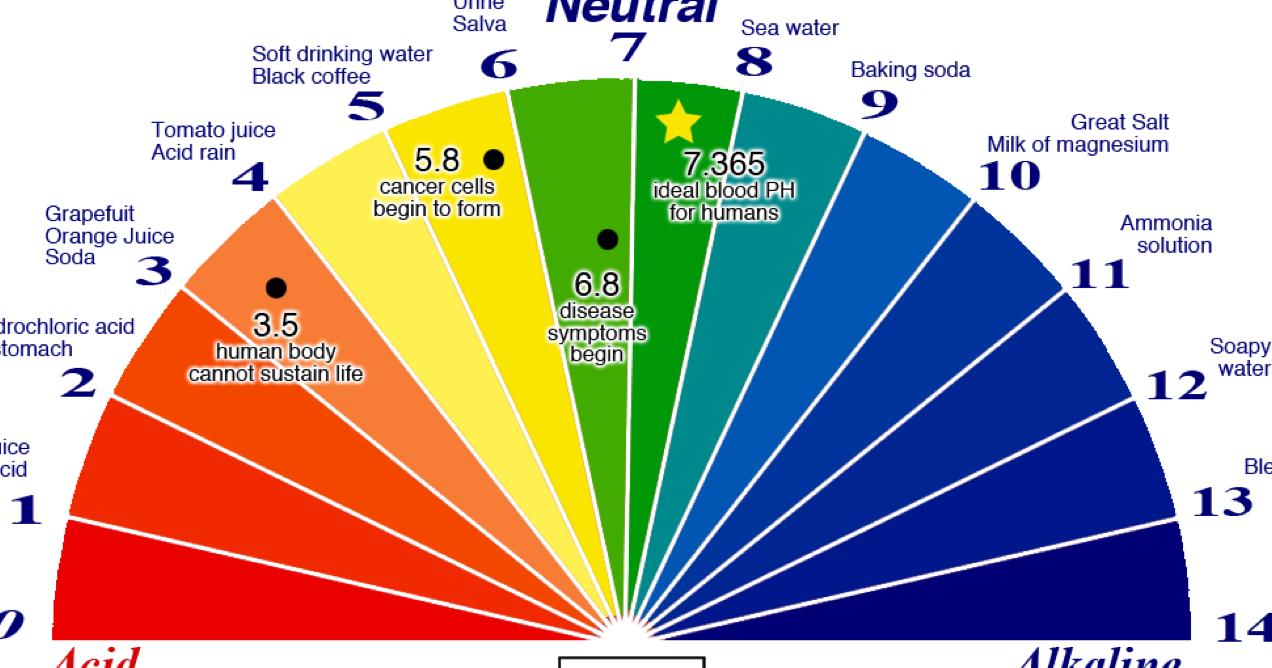 Pin on Natural Health