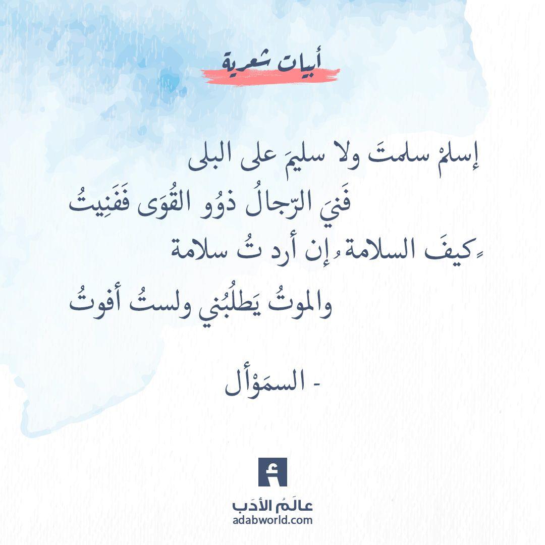 و الموت يطلبني ولست أفوت أبيات رائعة للسم و أل عالم الأدب Words Quotes Ali Quotes Quotes