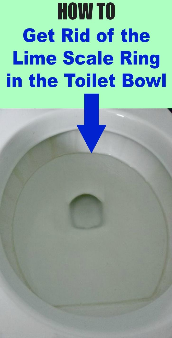 Get Rid Of The Lime Scale Ring In The Toilet Bowl Cleaning