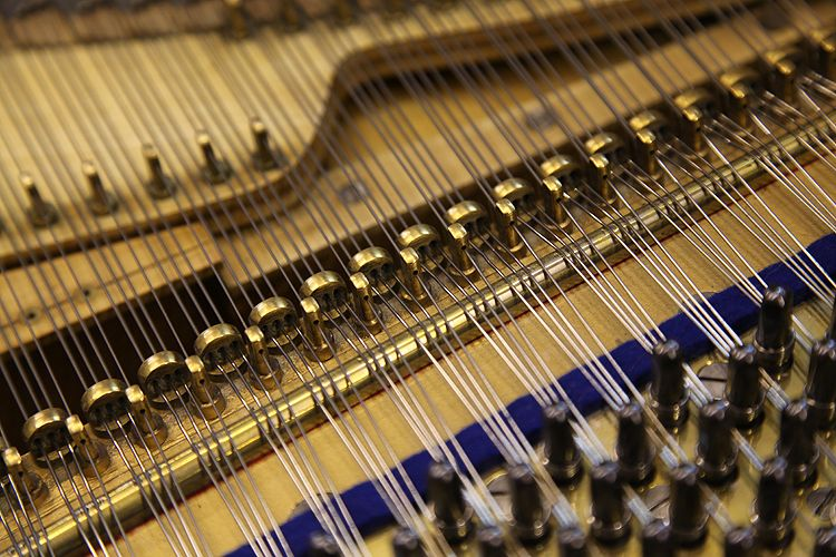 Aliquot stringing of Arthur Bliss\'s Bluthner grand piano at Be ...