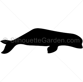 Beluga whale silhouette clip art. Download free versions of the image in EPS, JPG, PDF, PNG, and SVG formats at http://silhouettegarden.com/download/beluga-whale-silhouette/