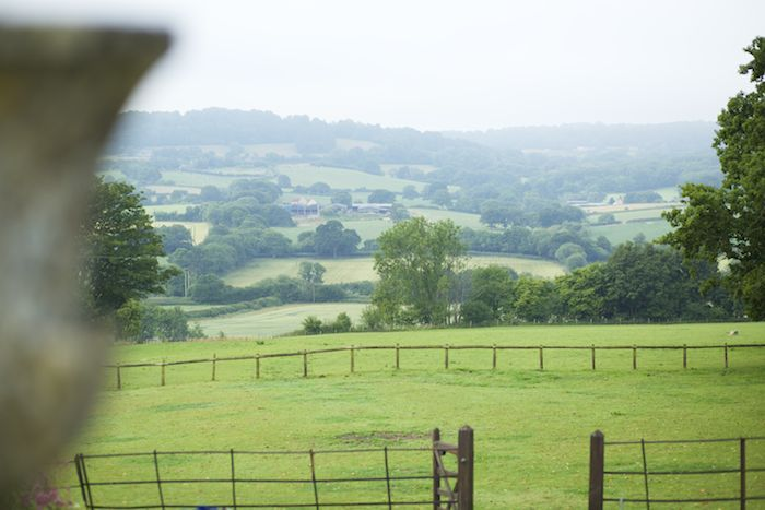 View from Hatch House garden across the fields. Photograph Jake Eastham.