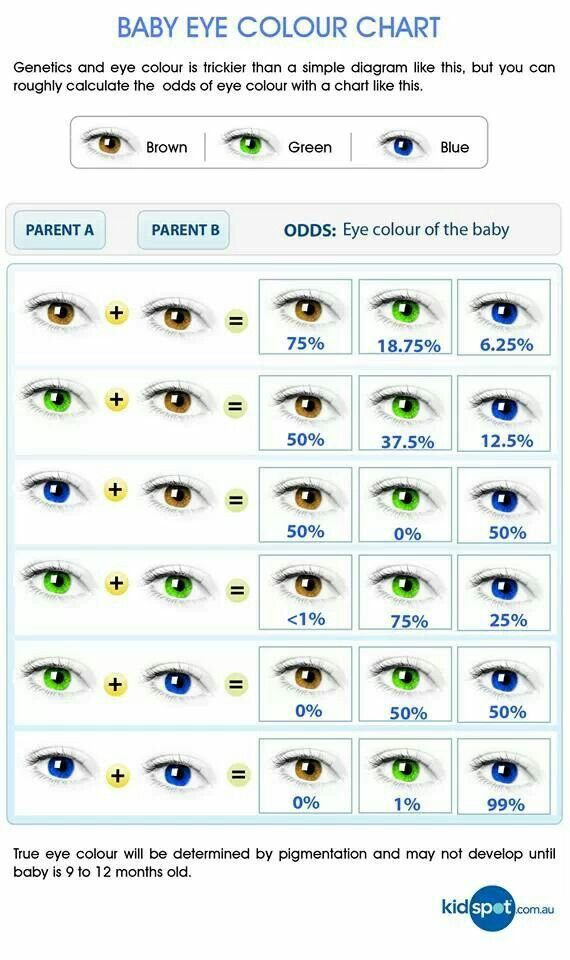 What Color Eyes Will Your Child Have