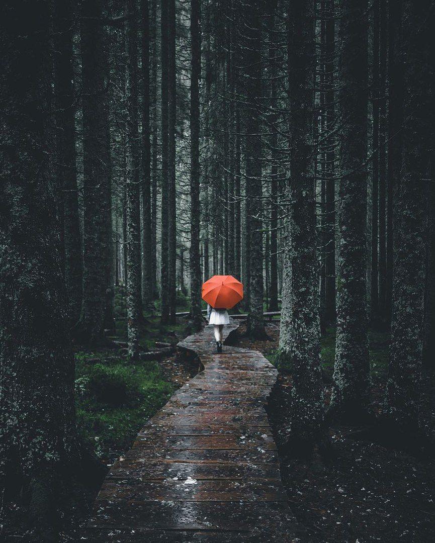 Rainy Day Photography: Pinterest