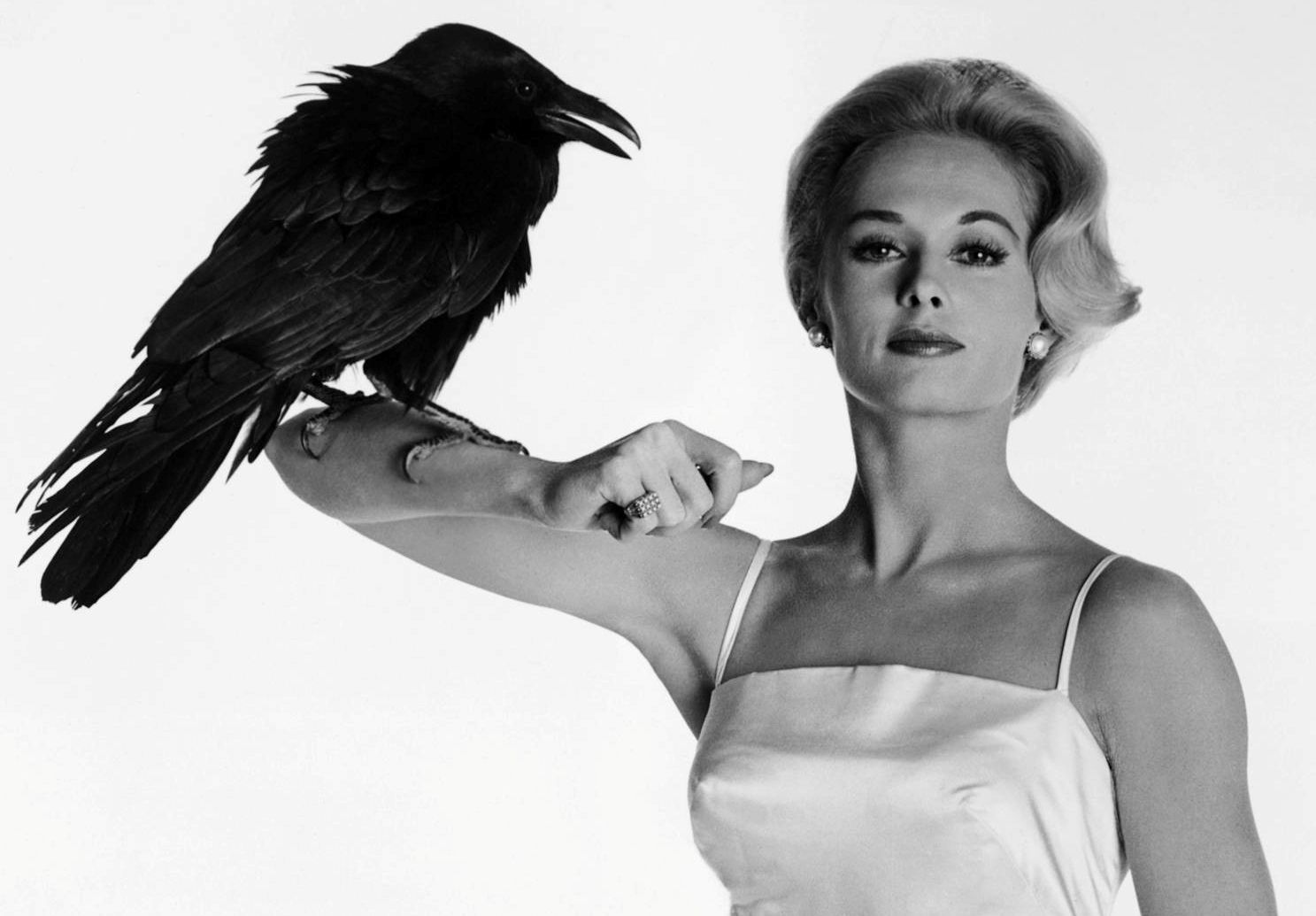 tippi hedren and her pet lion