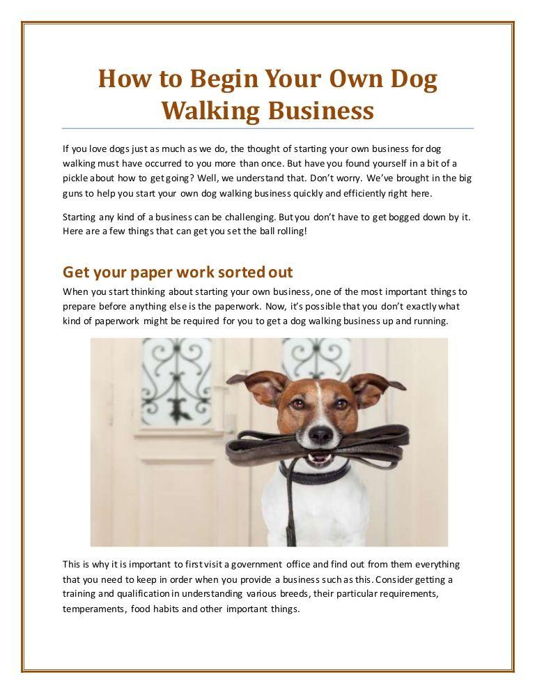 Pin by eSiteWorld on Uber for X Dog walking, Dog walking