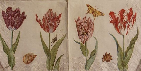 Botanical Tulips Cream - Set of 4 Napkins - IHR