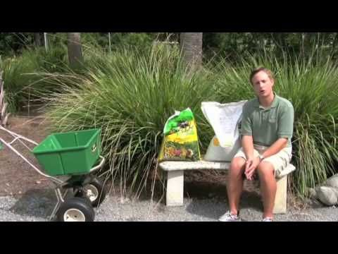 St Augustine Grass Care: Florida Fertilizer Lawn Maintenance Schedule