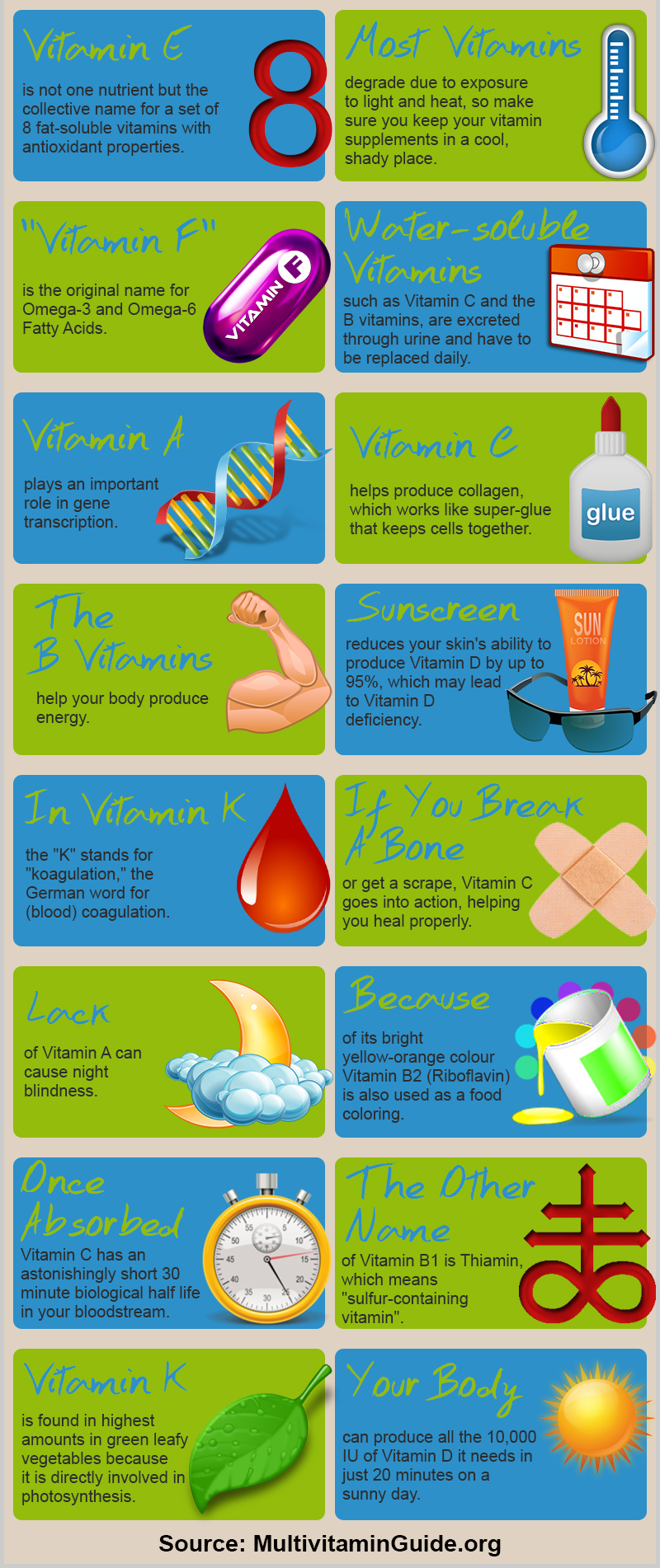 20 Fun Facts About Vit...