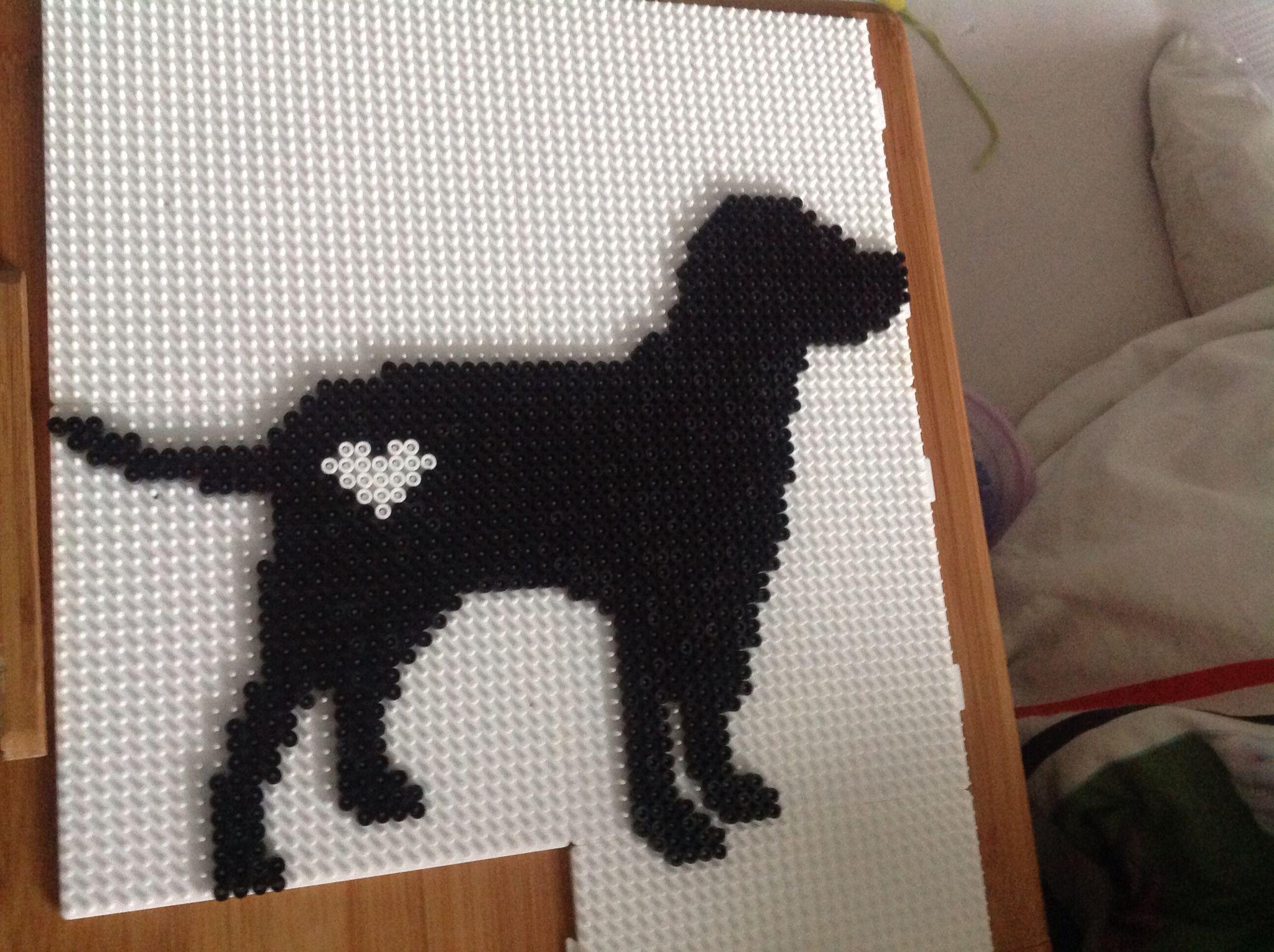 Labrador Retriever Heart Dog Perler Beads Crafts Perler #sjovmedperler