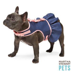 Martha Stewart Pets Polka Dot Dress Harness Harnesses Petsmart Martha Stewart Pets Pets Dog Harness