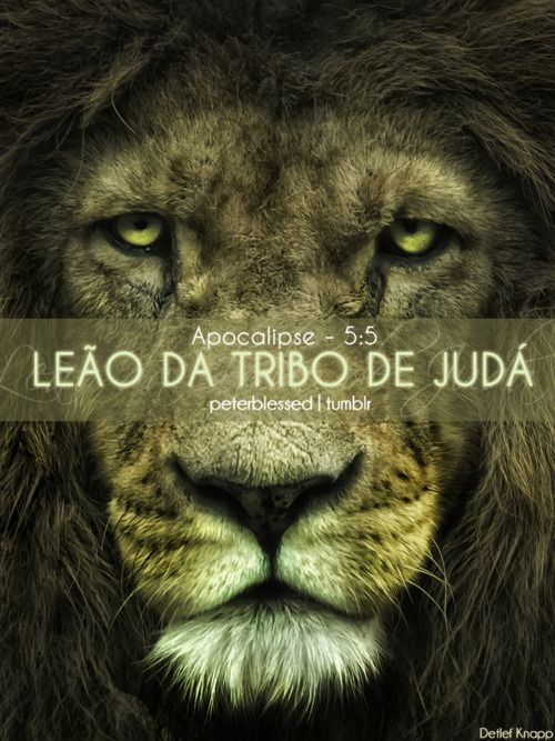 Leao Da Tribo De Juda Frases Biblicas Frases Verdades E Biblia