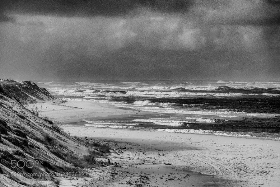Wild sea by Neris