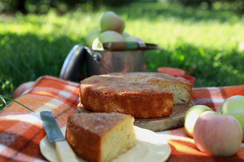 cinnamon rice cake toppings