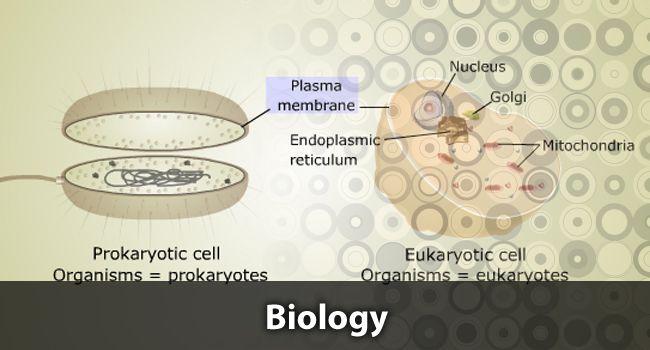 Homework help in biology