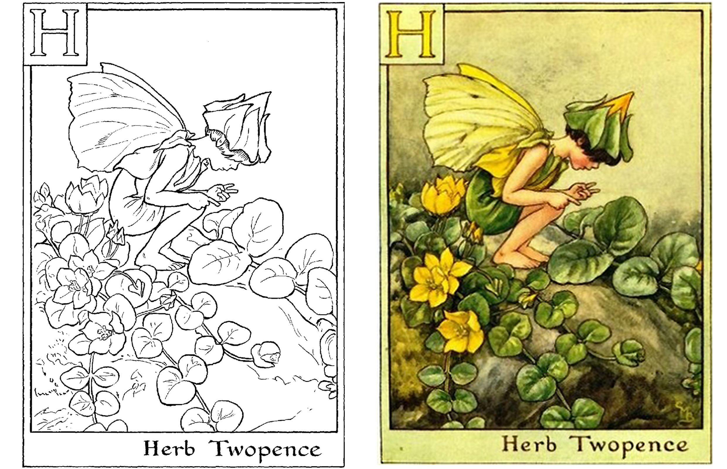Fantastic Flower Fairies Coloring Pages Ideas - Coloring Page ...
