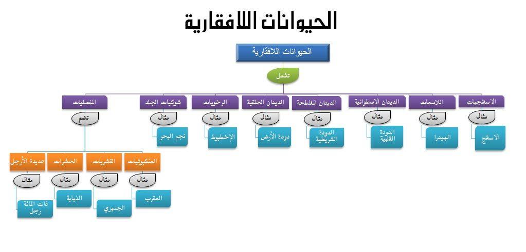 صورة ذات صلة Periodic Table Diagram